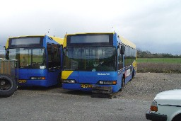 Neoplan-busser hos Wulff Bus, Hedensted
